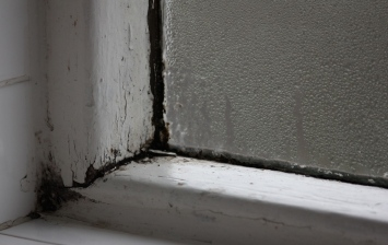 old wooden window frame and condensation